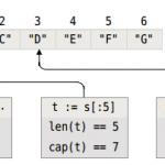 Go语言开发-集合类型-数组和切片