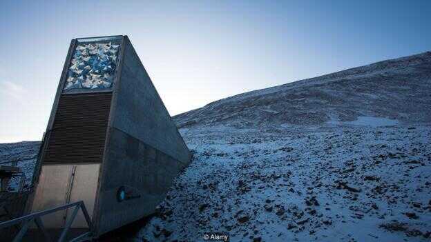 """2016 年,位于挪威北极圈内永久冻土层地下的""""末日种子库""""遭到了融化雪水的破坏。"""