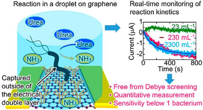 sie-nano-graphene-1.jpg