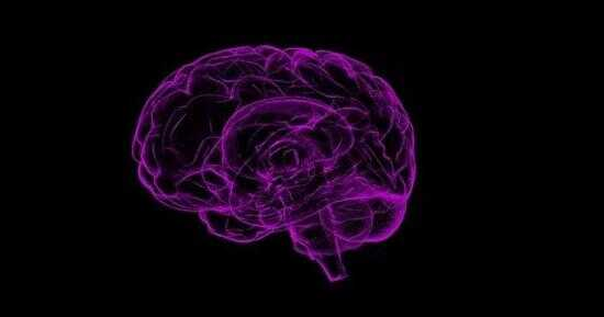 结果发现,环芳香烃暴露程度更高的儿童的大脑左半球的白质体积普遍较小。