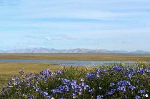 阿拉斯加北极国家野生动物保护区内的美丽风光