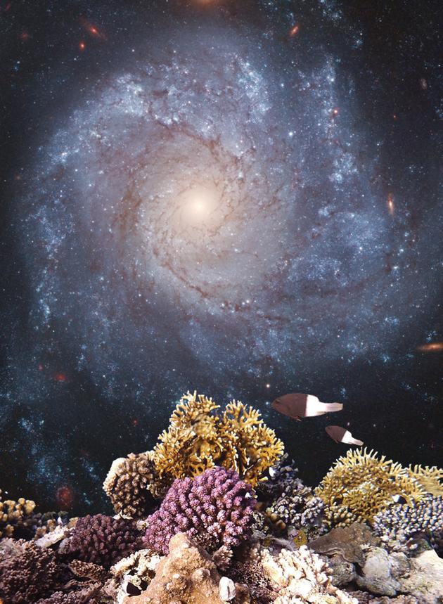 海底的岩石或许能为我们讲述更多关于恒星爆发的故事