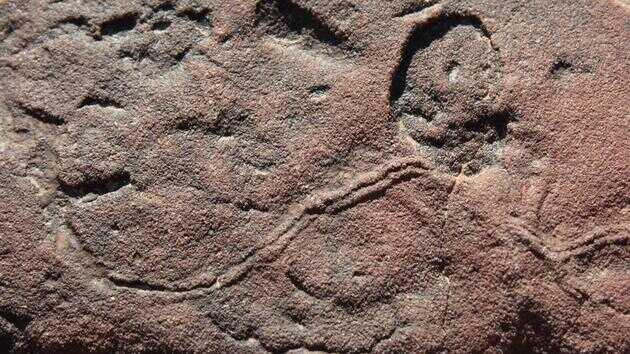 纳米比亚是为数不多记录了埃迪卡拉纪和寒武纪之间过渡时期的地方之一