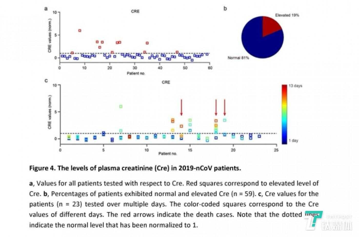 新冠肺炎患者的血浆肌酐(Cre)水平